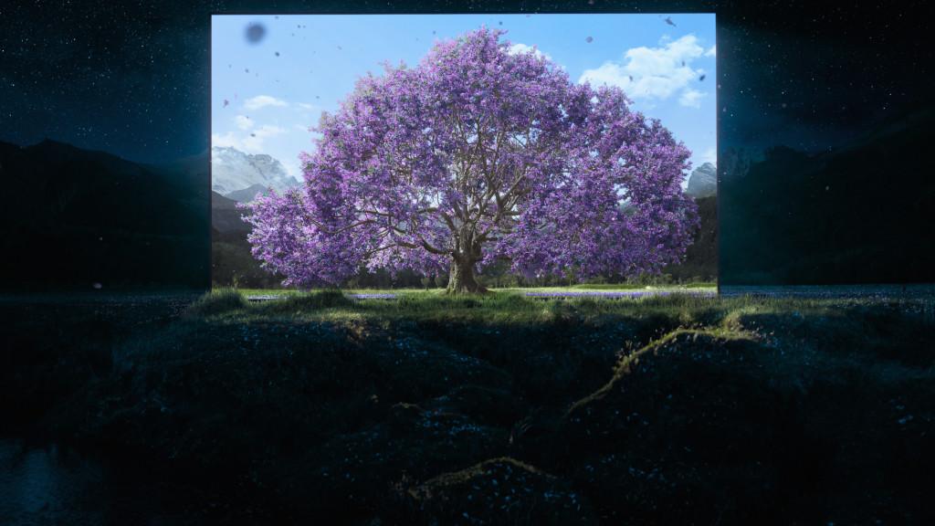Bravia AF8_Window into Daytime (3)