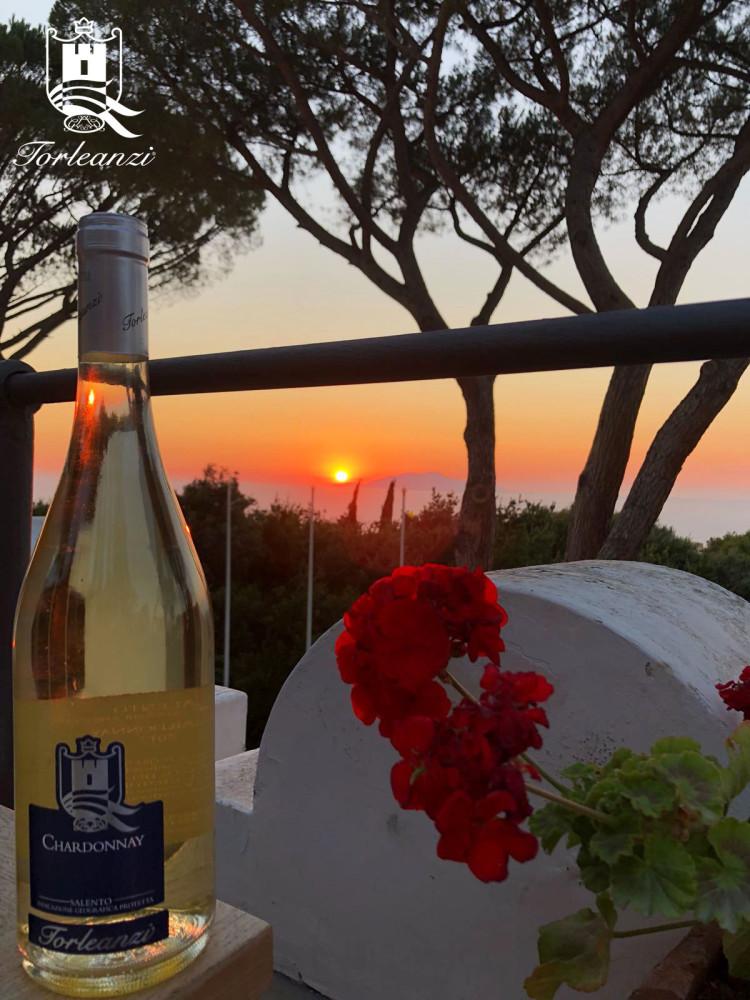 Torleanzi vina - Capri