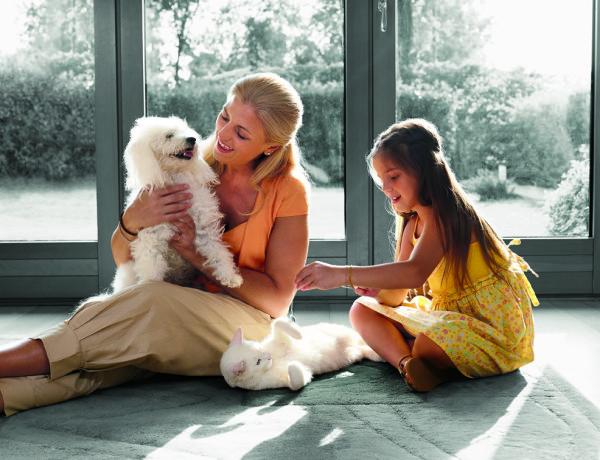 Pet razloga da ove zime udomite kućnog ljubimca